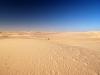 In der Weite der Sanddünen